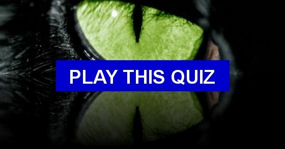 Quiz Horses Quiz Animals