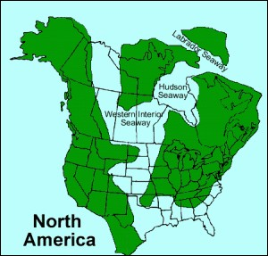 Was the geography of North America the same in the Mesozoic?