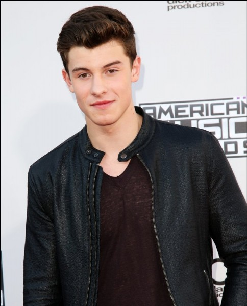 Why does Shawn have a scar on his cheek?