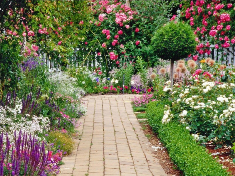 You ___ got a beautiful garden.