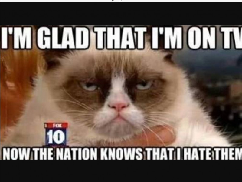 What date did Grumpy Cat become famous?