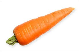 What is a carrot?