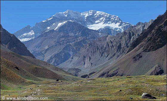 The tallest mountain in the South American Andes is named :