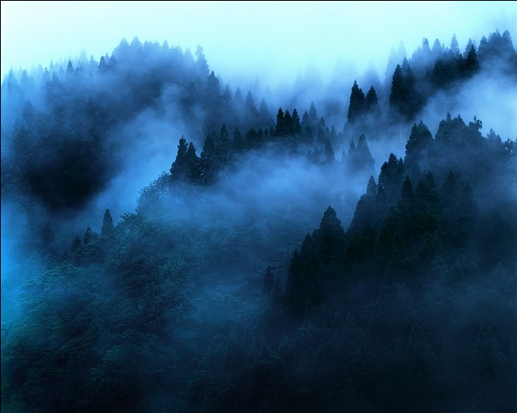 Which demon came up for the name of Mist?