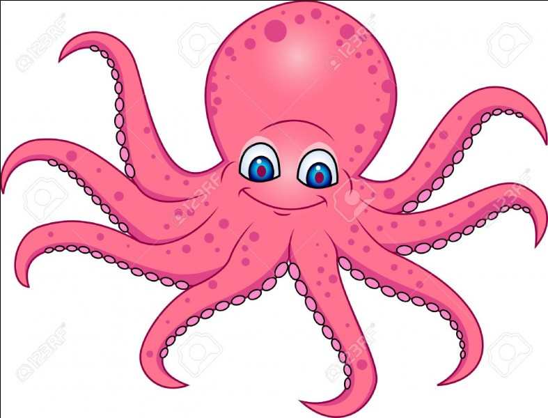 Do octopus have limbs or tentacles?