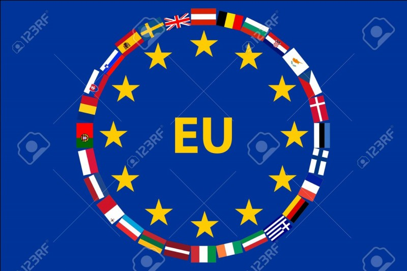 Which one is the most important organ of the European Union?