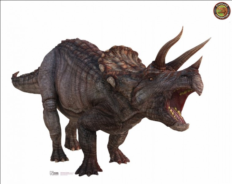 What is the number of short horns and long horns that Triceratops have?