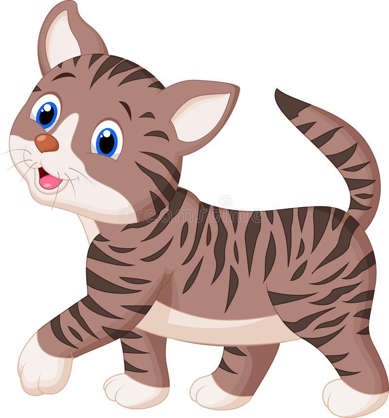Do you know cat breeds?