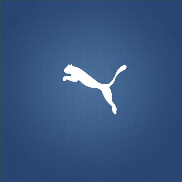 Which brand owns this logo?