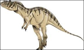 What is the name of this dinosaur ?
