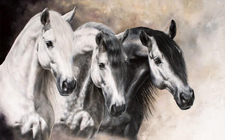 Horse & Art