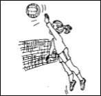 Le dimanche, j'aime jouer au volley-ball.