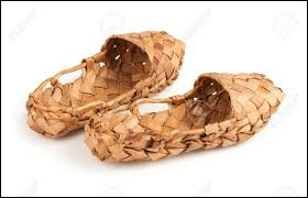 Whats is the name of these shoes ?
