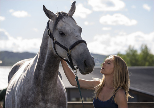 Which horse kicked Amy in the head, causing her to be temporarily blind?