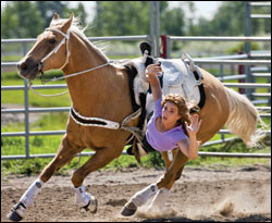 This amazing trick riding horse's name is......