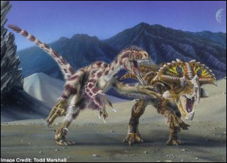 How hard was a velociraptor's bite?