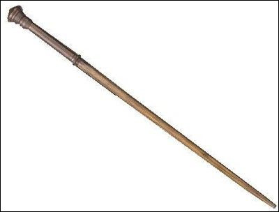 Whose wand is this?