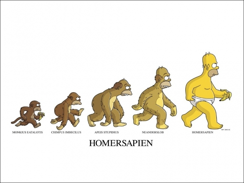 Homer's behavior is sometimes so bizarre that paleoanthropologists have wondered whether it was from a new line of hominids unknown until then :