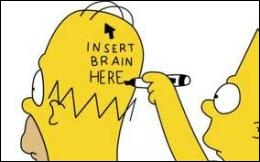 What makes Homer's brain characteristic ?