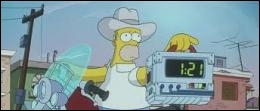 Homer, however, decides to return to Springfield in order to save its inhabitants from a terrible threat. What radical solution was decided by the president ?