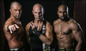 What is the name of this team of wrestlers ?