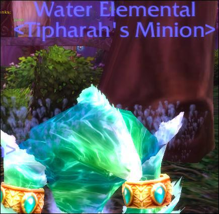 What spec is this Mage if he has this pet out?