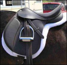 Is this saddle...