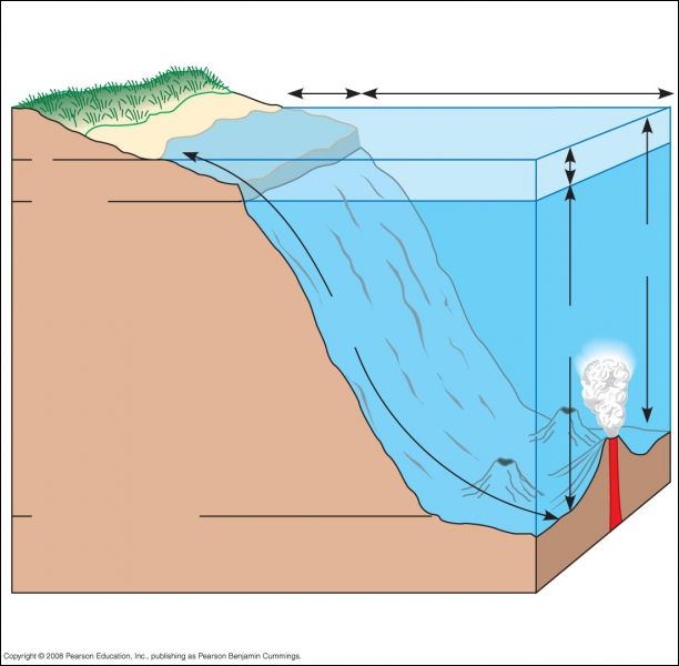 In Aquatic Biomes, the Littoral zone is to the Limnetic zone as...