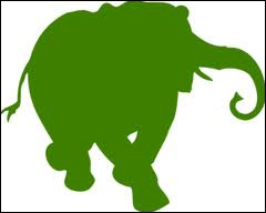 What's the colour of the elephant?
