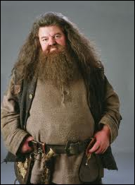 How did Hagrid write  happy birthday Harry  on Harry's birthday cake ?