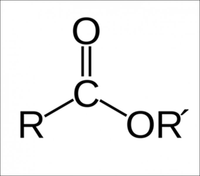 Identify the functional group.