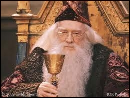 What is the name of the first actor who played Dumbledore?