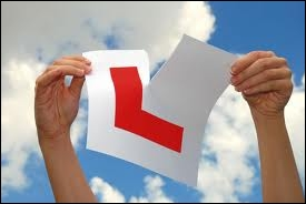 They (____) my driving test