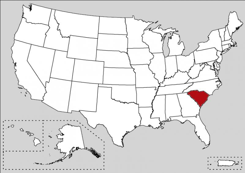 You can notice a white palmetto tree on an indigo field in the flag of this state.
