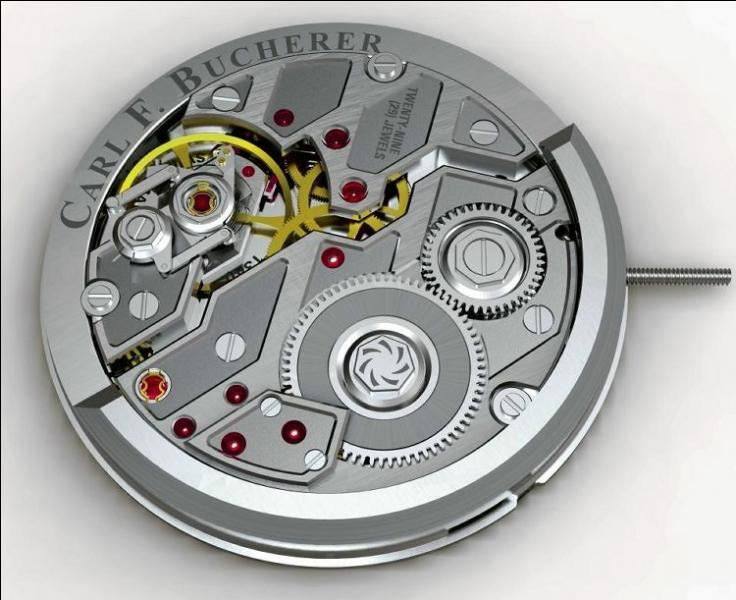 Which of the following materials is not used in watch movements?
