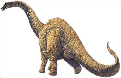 How ... was the Argentinosaurus dinosaur? 80 to 100 tons.
