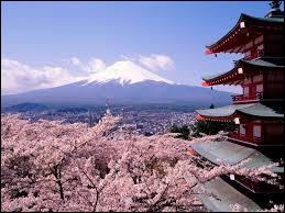 What type of Visa is required for Japan?
