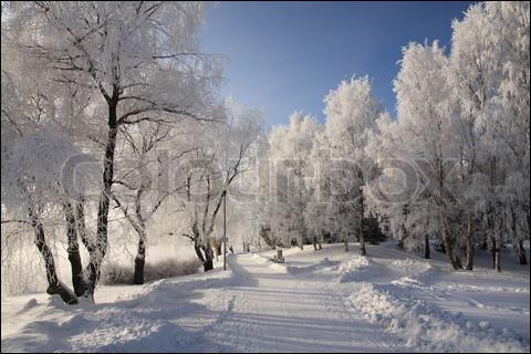 It is freezing today, the temperature is - 7°C : seven degrees below ...