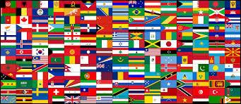 Flags and science - What is name of the study of flags that explains their composition and their signification?