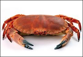 Crabs are invertebrate animals and they are crustaceans... so...