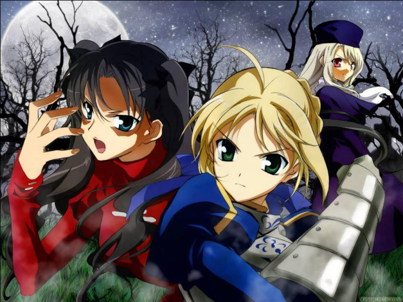 Which of these aren't a class in Fate Stay Night?