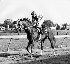 What leg markings are shown on Secretariat?