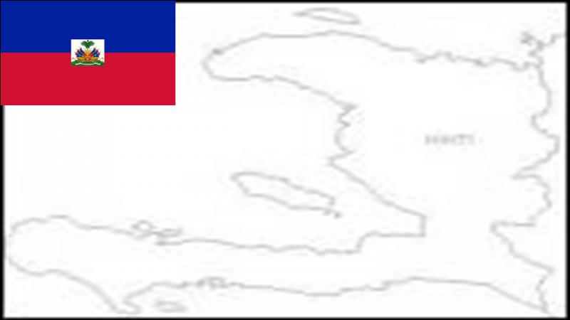 Haiti is a Caribbean country which shares borders with the Dominican Republic. In January of 2010 this country suffered a big earthquake. Which tectonic plate present in Haïti is the origin of this earthquake ?