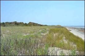 What is a secondary dune?