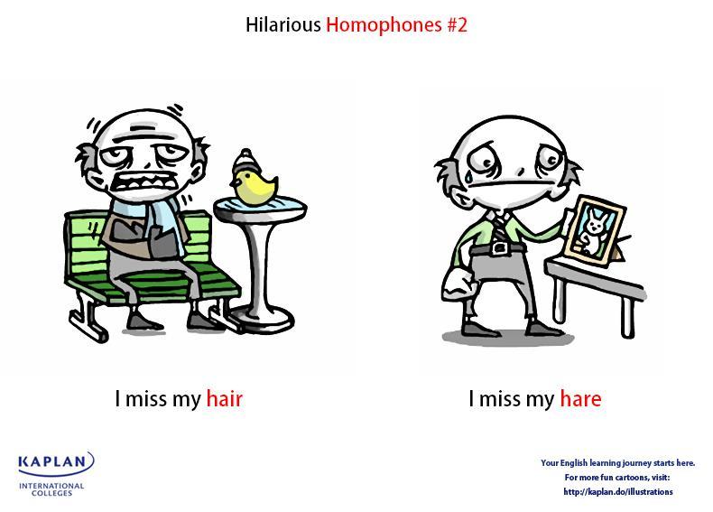 Homophones (1)