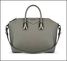 Is this bag grey?