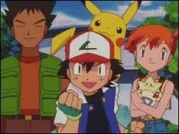 Who were Ash's travelling companions in Indigo / Kanto region?