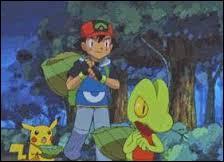 What is Ash's starter pokemon in Hoenn league?