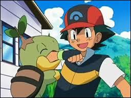 What's Ash's starter pokemon in Sinnoh region?
