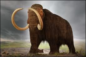 Did mammoths and humans live in the dinosaur times?